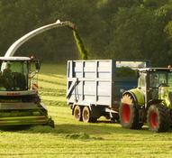 Second cut silage